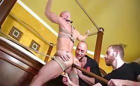 Tied Up Slave Moans During Edging And Prostate Stimulation