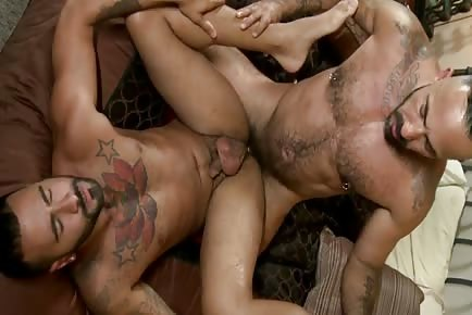 Bear Alessio Romero pounds male's ass